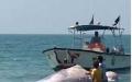 الصورة: بالفيديو.. العثور على حوت نافق على شواطئ رأس الخيمة