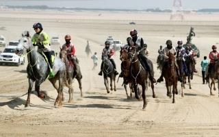 علياء تهدي «ام.آر. ام» لقب سباق القدرة للسيدات