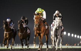 الصورة: كأس دبي العالمي.. خيول الإمارات على موعد مع المجد