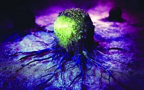الصورة: لقاح واعد في مكافحة مرض السرطان