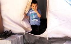 الصورة: الإمارات: الحل السياسي المخرج الوحيد لأزمة سوريا
