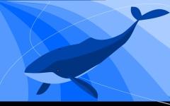 الصورة: تقتل والدتها وشقيقها بتعليمات من الحوت الأزرق