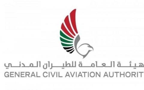 """الصورة: """"مقاتلات قطرية"""" تهدد سلامة طائرة مدنية إماراتية"""