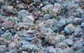 الصورة: ابتكار إنزيم قادر على تفتيت البلاستيك