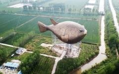 الصورة: أكبر سمكة في العالم للتوعية بحماية البيئة