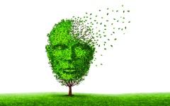 الصورة: 13 محوراً ومبادرة في «استراتيجية الصحّة النفسية» تعزز استقرار وسعادة المجتمع