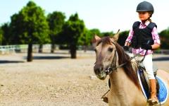 الصورة: ركوب الخيل يحسّن قدرات الأطفال المعرفية