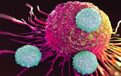 الصورة: تطوير علاج للسرطان باستخدام  «إل إي دي»