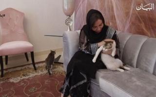 الصورة: منال المنصوري طبيبة تفيض إنسانية على قطط الشوارع