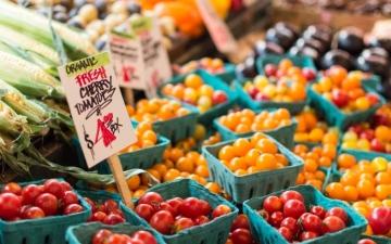 الصورة: تطبيق يمكّن الأسواق بيع منتجاتها الغذائية الفائضة