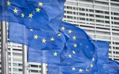 الصورة: دور الاتحاد الأوروبي  واغتنام الفرصة