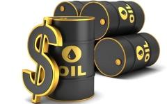 الصورة: المزروعي: أسعار النفط  لا تعكس ديناميكيات السوق