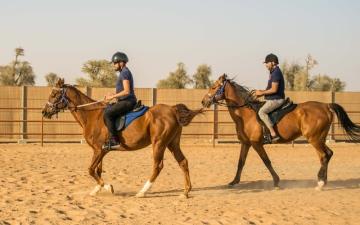 الصورة: مغامرات بانتظار عشاق الخيول في مليحة