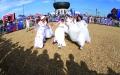 الصورة: كأس عالم بفساتين الزفاف