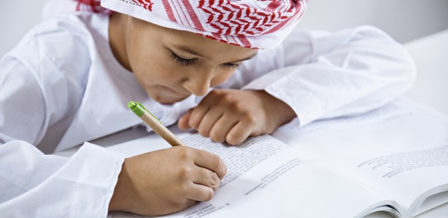 Essay writer in uae