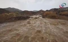الصورة: بالفيديو.. أمطار الخير على الدولة