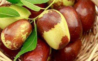 الصورة: فاكهة العناب تعالج السرطان