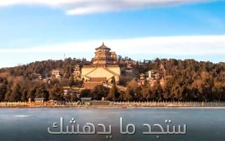 """الصورة: """"شوف البيان"""" تطلق 8 فيديوهات احتفاءً بأسبوع الصداقة بين الإمارات والصين"""