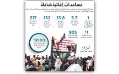 الصورة: لوكوك: الإمارات أكبر مانح لليمن هذا العام