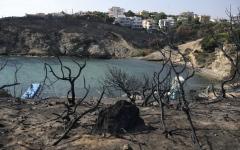 الصورة: تقارير يونانية: مؤامرة تركية وراء  الحرائق