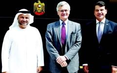 الصورة: الإمارات: الحوثي في يأس وندعم الحل السياسي