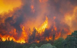 """الصورة: حريق """"ميندوسينو"""" يوشك أن يصبح الأكبر في تاريخ كاليفورنيا"""