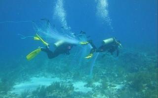 الصورة: ابتكار ملابس تتيح إمكانية التنفس تحت الماء