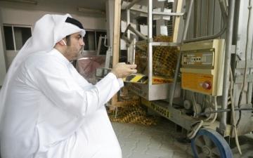 الصورة: محاكم دبي تنجز 99.5 % من قرارات الدعاوى والتنفيذ