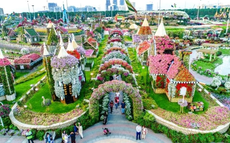 الصورة: «تلغراف»: دبي ميراكل غاردن بديل لحدائق بابل المعلقة
