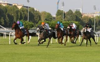 الصورة: سباق كأس رئيس الدولة للخيول في روسيا اليوم