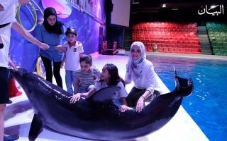 الصورة: أسرار الدلافين من كواليس عروضاتها الحية في دبي!