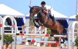 الصورة: الكويتي علي الخرافي يحصد ذهبية «الفردي» بقفز الحواجز