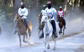 الصورة: «ترايون لايف» يغطي فعاليات البطولة