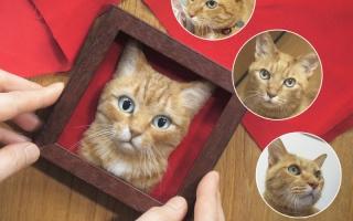 الصورة: يابانية تبدع وجوه قطط شبيهة بالواقع