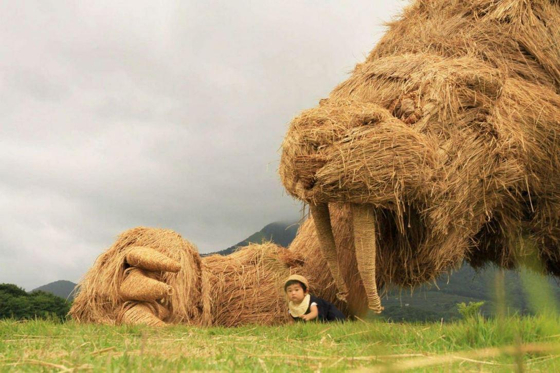 بالصور.. منحوتات فنّية بقش الأرز