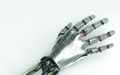 الصورة: تقنية ذكية لليد الاصطناعية تؤهل الإنسان لالتقاط إبرة