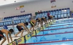 الصورة: كأس الإمارات للسباحة الجمعة المقبلة