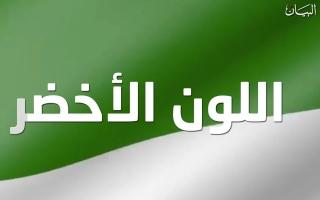الصورة: اكتشفوا المعاني التي يرمز إليها اللون الأخضر في العلم الإماراتي