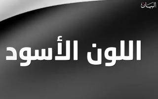 الصورة: اكتشفوا المعاني التي يرمز إليها اللون الأسود في العلم الإماراتي