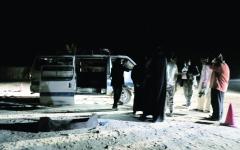 الصورة: الإمارات: نقف مع مصر ضد محاولات زعزعة أمنها
