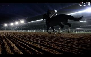 الصورة: الصورة: خيول في ميدان التحدي