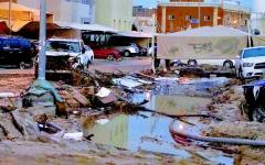 الصورة: الحكومة الأردنية تعد بتطوير المناطق المنكوبة