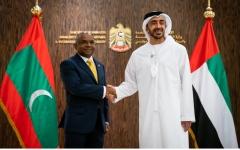 الصورة: عبدالله بن زايد ووزير خارجية المالديف يبحثان العلاقات الثنائية وقضايا إقليمية ودولية