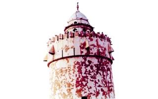 الصورة: الصورة: زايد وقصر الحصن.. تباشير الوعد