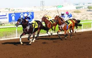 «شادويل والجامعات» في سباق «بر دبي» اليوم