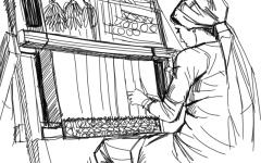 الصورة: إحياء فنون صناعة السجاد في مصر