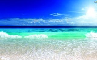 الصورة: الصورة: «سواحل الإمارات».. سيرة حافلة بالجماليات والتفاعل الإنساني الخلاق