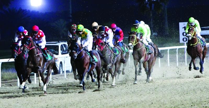 الصورة : Ⅶ  خيول رئيس الدولة خطفت الأضواء في السباق     من المصدر