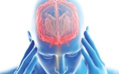 الصورة: الصورة: العدوى الفيروسية أكثر الأسباب الشائعة لالتهاب الدماغ
