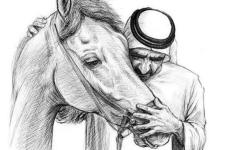 الصورة: الصورة: كأس دبي العالمي .. قصيدة جديدة لمحمد بن راشد
